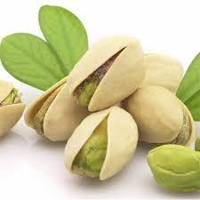 produccion de pistacho