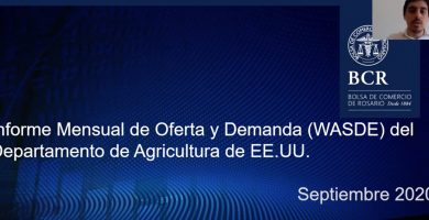 informe usda wasde septiembre 2020 soja maiz trigo