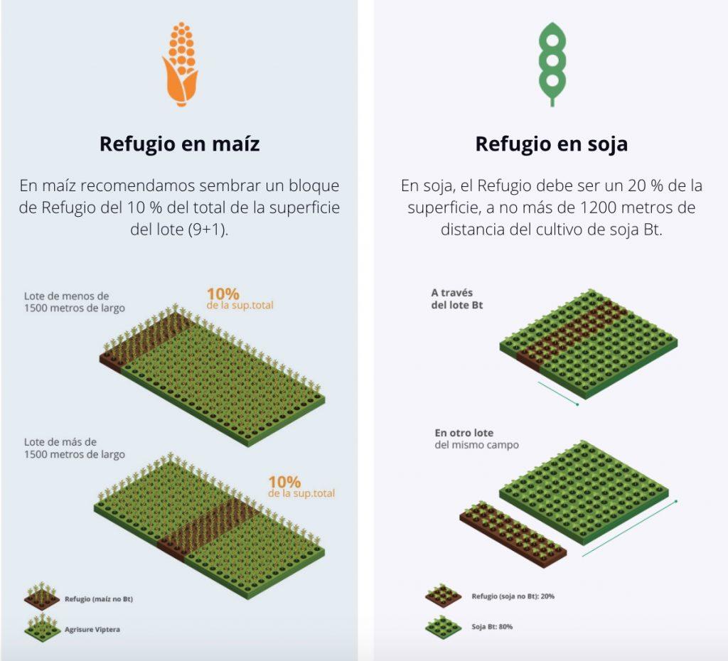 viptera 3 programa refugio cultivos geneticamente modificados proteina vip