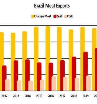 exportaciones de carne brasil 2021