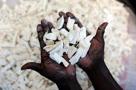 foto de trozos de mandioca para moler y hacer harina de mandioca
