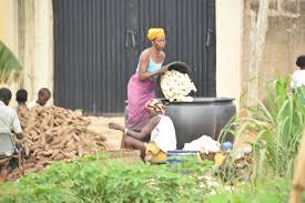 foto de mandioca hacer harina de mandioca