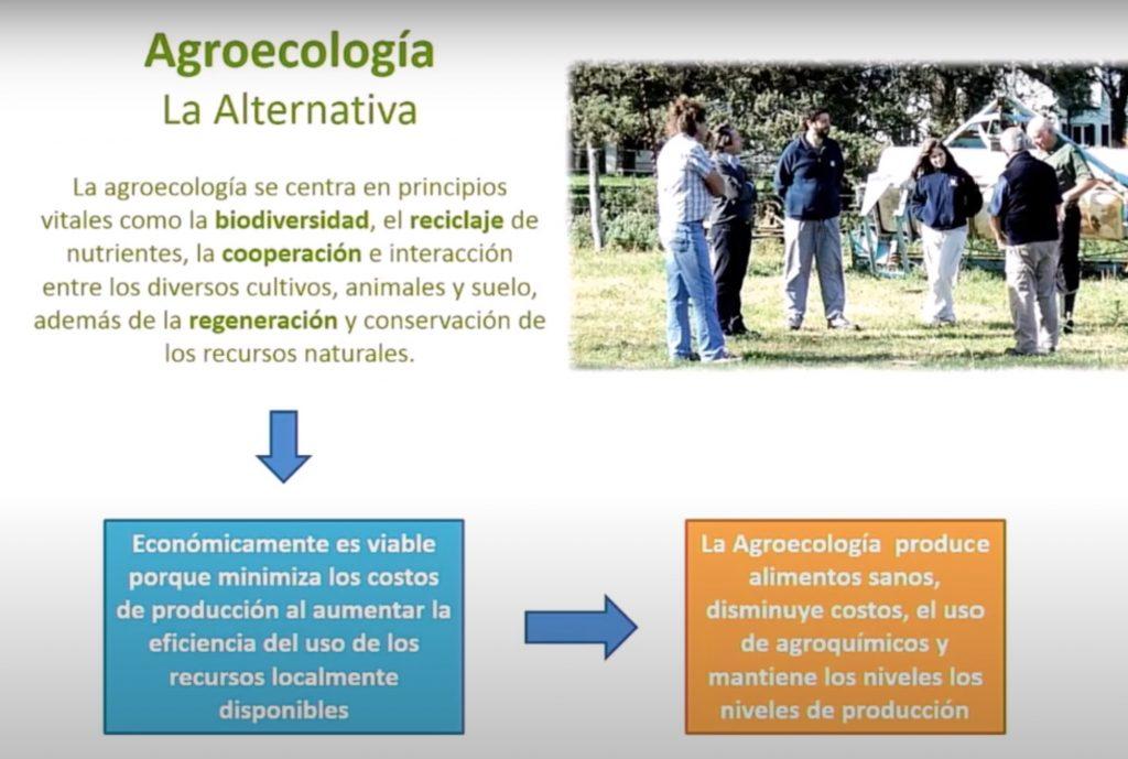 principios de la agroecologia