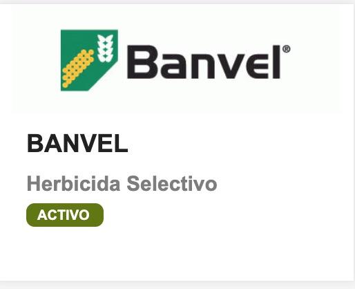 Banvel Sygenta dicamba herbicida malezas hoja ancha