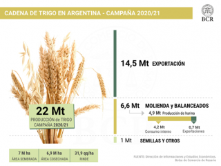 precio del trigo 2021 2020