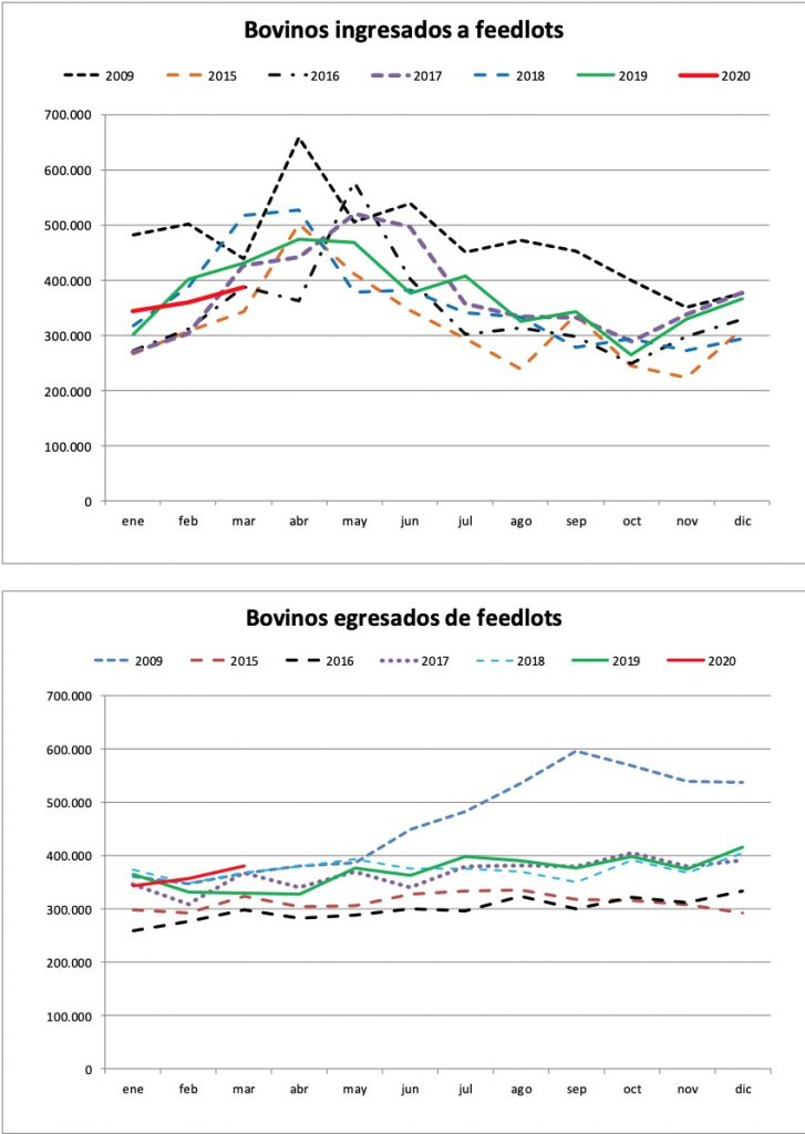 ingresos y egresos de vacunos al feedlot