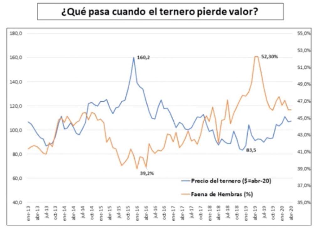 relacion entre el precio del ternero de invernada y la faena de hembras liquidacion del stock ganadero