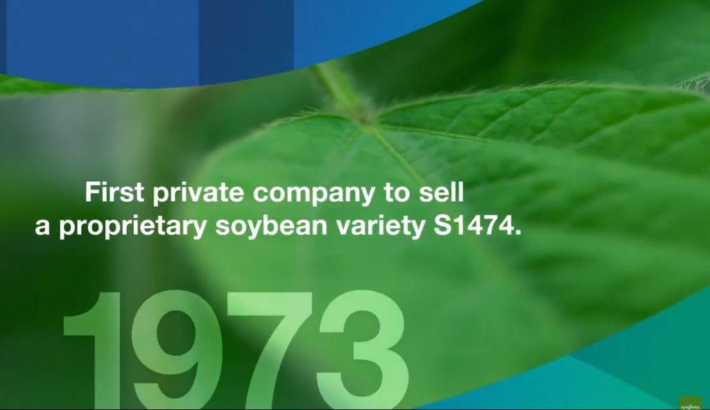 nk semillas primera empresa en vender hibridos de maiz