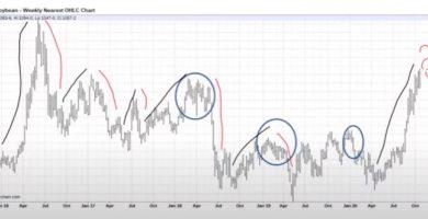 precio soja historico mayores subas y bajas