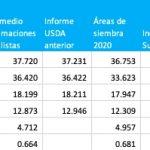 informe usda marzo 2021 area sembrada soja maiz trigo