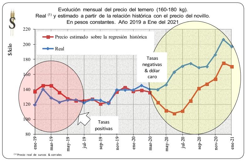 relacion historica precio del ternero versus precio del novillo