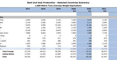 ganaderia argentina 2021 cierre exportaciones carne paula español