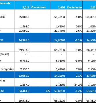 zafra terneros argentina 2021 stock ganadero