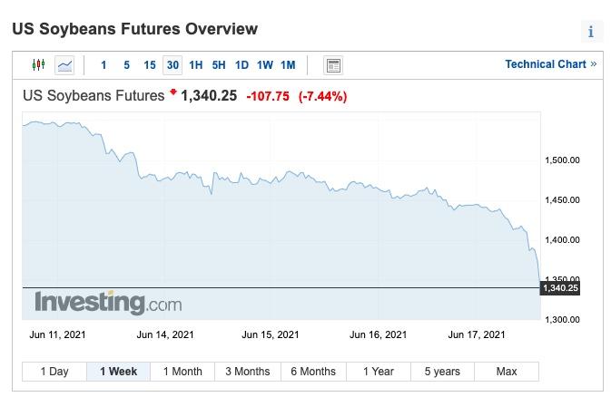fuerte caida precio de la soja junio 2021
