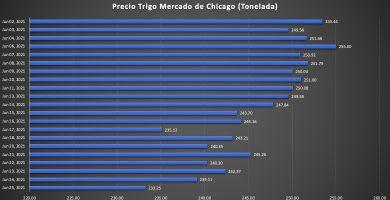 precio del trigo en chicago hoy