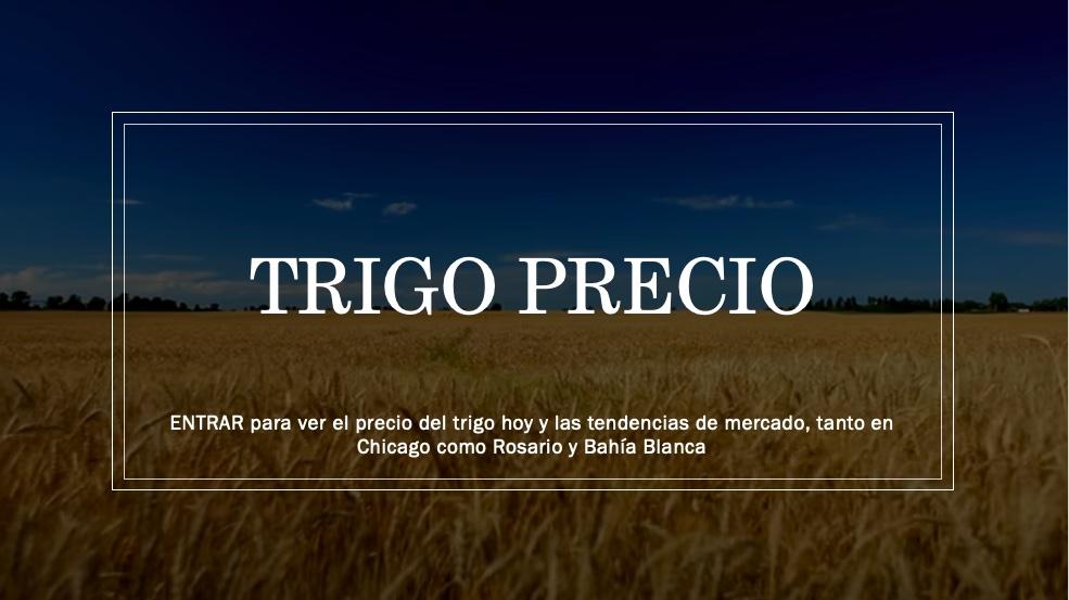 TRIGO PRECIO