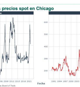 precio historico del maiz y la soja 1990 a 2021